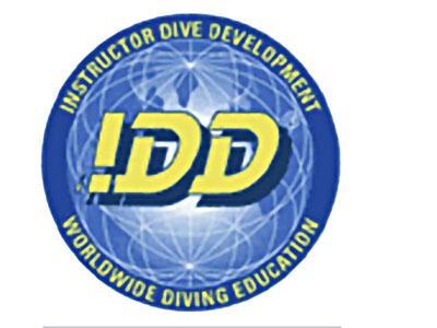 Обучающая система IDD