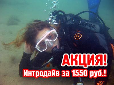 Внимание! АКЦИЯ! Цена на интродайв снижена до 1550 рублей!
